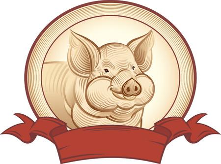 Cerdo gráfica. Vector objeto etiqueta o marcas registradas. Ilustración de vector