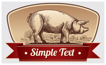 domestiÑ: Cerdo gráfica y el paisaje rural en un marco. Vector objeto etiqueta o marcas registradas.
