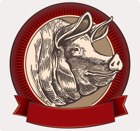 Cerdo gráfico en un marco de diseño de etiquetas. Vector objeto etiqueta o marcas registradas. Ilustración de vector