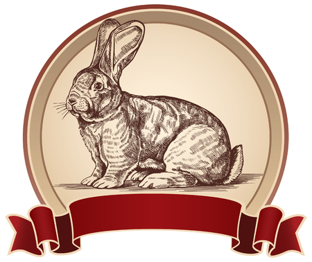 graphical: Graphical rabbit in a frame. Label elements. Illustration