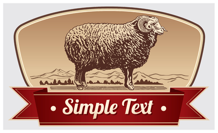 Graphical Ram, Sheep. Label lamb. Illustration