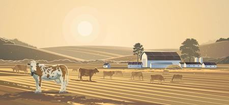 cow farm: Rural landscape. Farm.