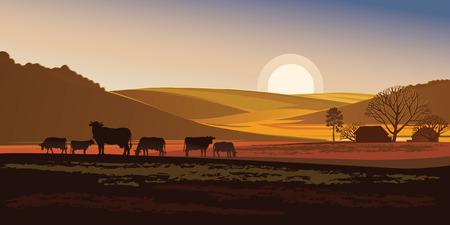 여름 아침. 농촌 풍경과 소입니다.