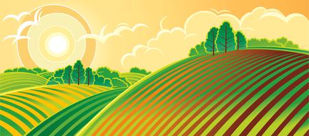 Rural landscape. Spring.