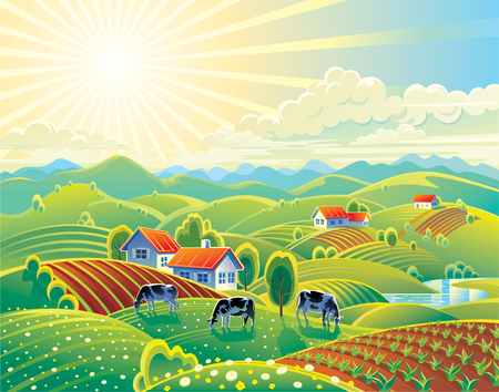 summer rural landscape