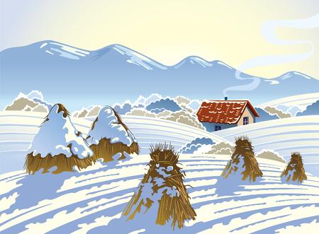 rural landscape: Winter rural landscape.