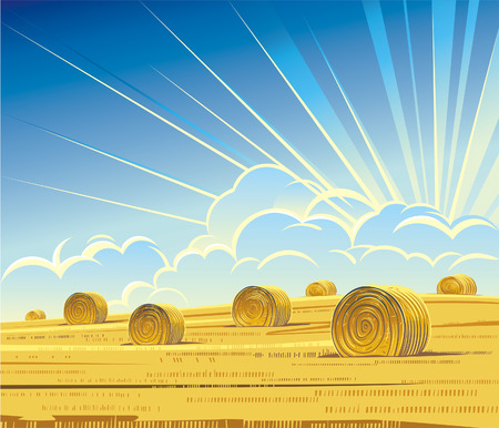horizon over land: Summer rural landscape with hay.