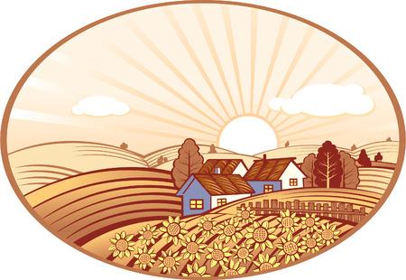 rural landscape: Summer rural landscape with sunflowers Illustration