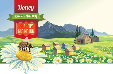 honey bees: Mountain landscape with a bee and apiary, village in background Illustration