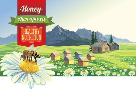 abejas: paisaje de monta�a con una abeja y apiario, pueblo en el fondo
