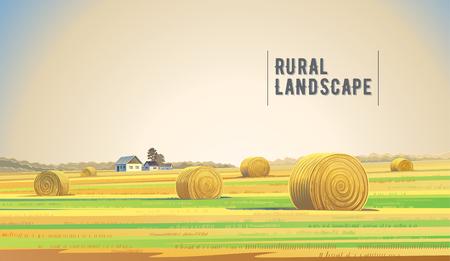 건초, 필드 및 마을 시골 풍경입니다.