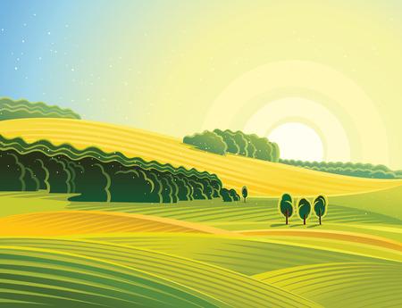 Rural landscape with field. Morning mood. Illustration