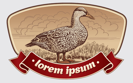 domestic duck: Illustration duck in graphic style in the label.