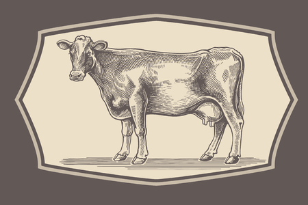 Cow in graphical style in the frame.