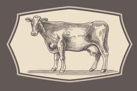 dairy: Vaca en el estilo gráfico en el marco.
