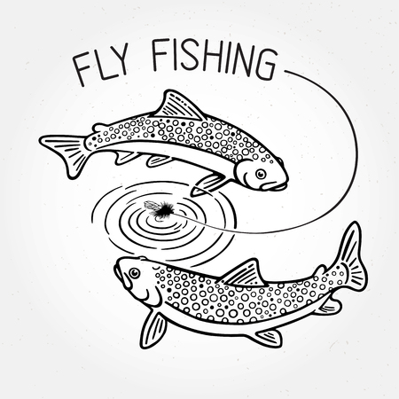 fly fishing: Trout swim around the bait and the inscription: Fly fishing. Illustration