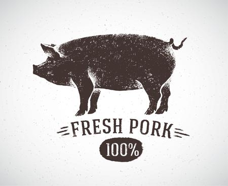 """cerdos: cerdo gráfico y la etiqueta: """"cerdo fresco"""". Vectores"""