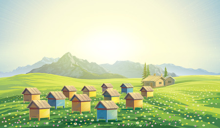 a bee: Bee apiary in the mountains. Mountain landscape morning dawn. Stock Photo