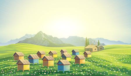 abeja: colmenar de abejas en las montañas. paisaje de la montaña del amanecer mañana. Foto de archivo