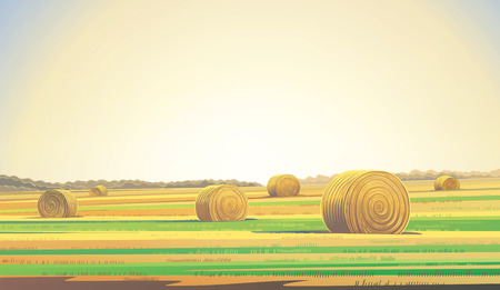 horizon over land: Countryside landscape from agricultural field and bales of hay. Stock Photo