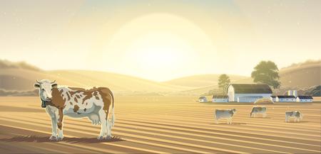 Landelijk landschap met koeien, kan worden gebruikt als een achtergrond.