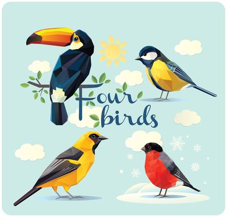 Conjunto de cuatro aves: el tucán, oropéndola, camachuelo, y tit. Ilustración de la figura poligonal simplificada.