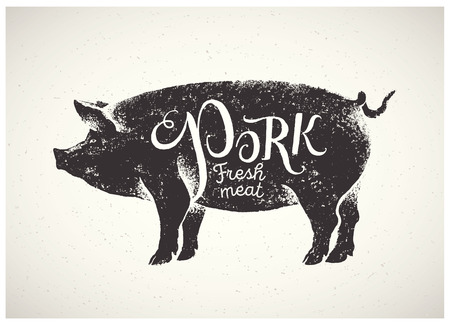 Pig in graphic style, hand-drawn Illustration. Stock Vector - 64316799