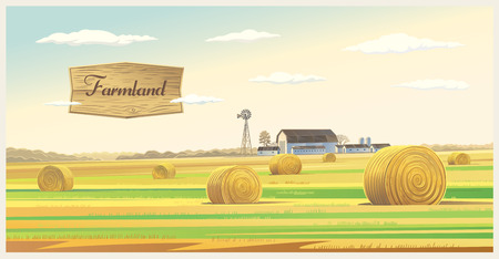 fall landscape: Autumn rural landscape with hay, and farm on the back plan.