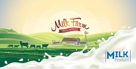 암소와 우유의 스플래시와 농촌 아침 풍경.