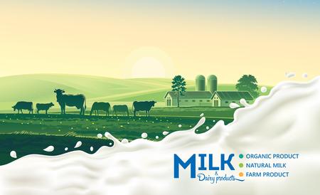 암소와 우유의 스플래시와 농촌 풍경. 아침 태양과 새벽. 일러스트