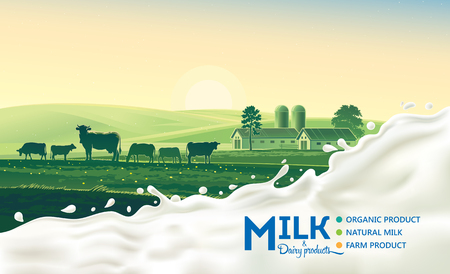 Rural landscape with cow and splash of milk. Morning sun and dawn. Illustration