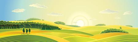 田園風景、夏の日の出、パノラマ ビュー。  イラスト・ベクター素材