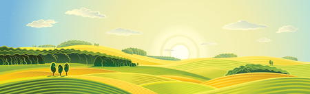 Rural landscape, summer sunrise, panorama view. Illustration