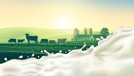 rural landscape: Rural landscape with cow and splash of milk. Morning sun and dawn. Stock Photo