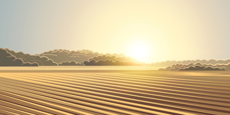 hay bale: Rural autumn landscape, the sun rising over the agricultural fields.