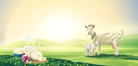 goat cheese: Dawn rural landscape with goat and kid and set dairy product. Raster illustration. Stock Photo