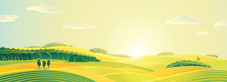 panorama view: Rural landscape, summer sunrise, panorama view. Stock Photo