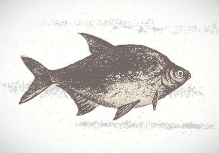 spawn: Fish bream, silhouette of a fish