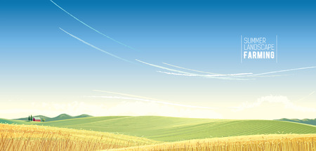 Rural landscape with wheat and house, is created for use as a background image. 일러스트