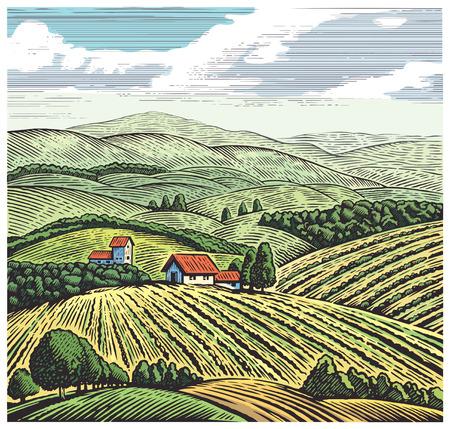 Landschaft im ländlichen Raum in Grafik-Stil, von Hand gezeichnet und umgerechnet auf Illustration. Vektorgrafik