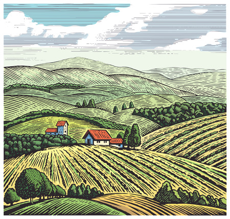 Rural landscape in graphic style, hand drawn and converted to Illustration. 版權商用圖片 - 67968807