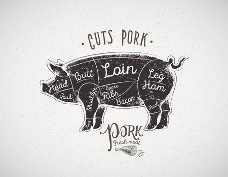 butchering: Graphic silhouette of a pig with the line of cutting for the butcher. Illustration