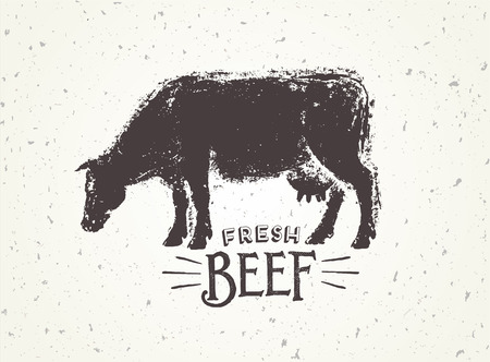 Graphic illustration of the cow with inscriptions, hand-drawn, vector illustration. Illustration