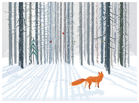 Winter forest landscape with a Fox. Illustration