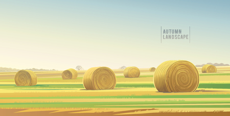 horizon over land: Autumn rural landscape from agricultural field and bales of hay. Vector illustration. Illustration