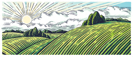 arable: Rural landscape with hills and medows, in the graphic style, illustration is hand-drawn.