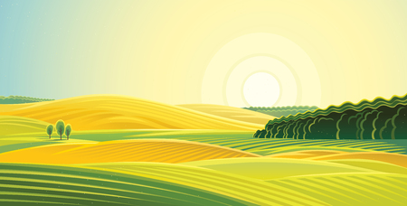 Rural landscape. Fields and hills at dawn. Illustration
