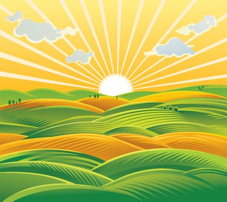 Rural landscape. Fields and hills at dawn. Illustration