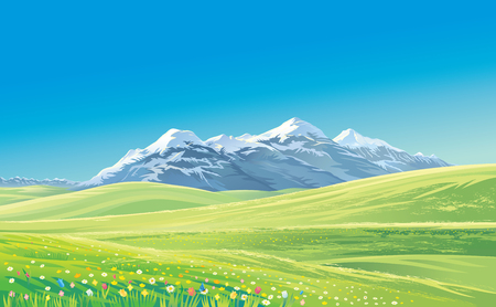 mountain pass: Mountain landscape with alpine meadows, vector illustration.