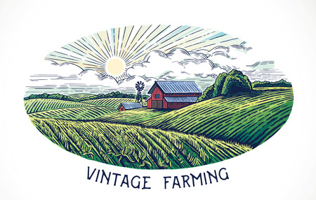 Rural landscape in engraving and vintage style. Hand drawn and converted to vector Illustration. 일러스트